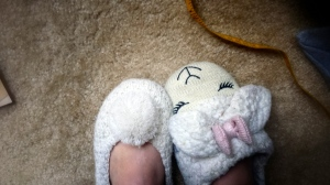 That's right…I accidentally put on mismatched slippers today, and I'm still wearing them like this.  Don't judge my slippers…they're whimsical.